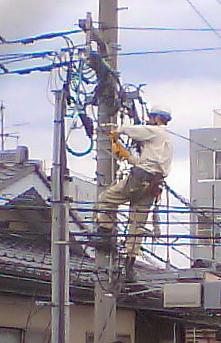 電柱のヒューズ交換