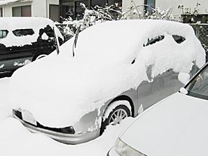 積雪20cm